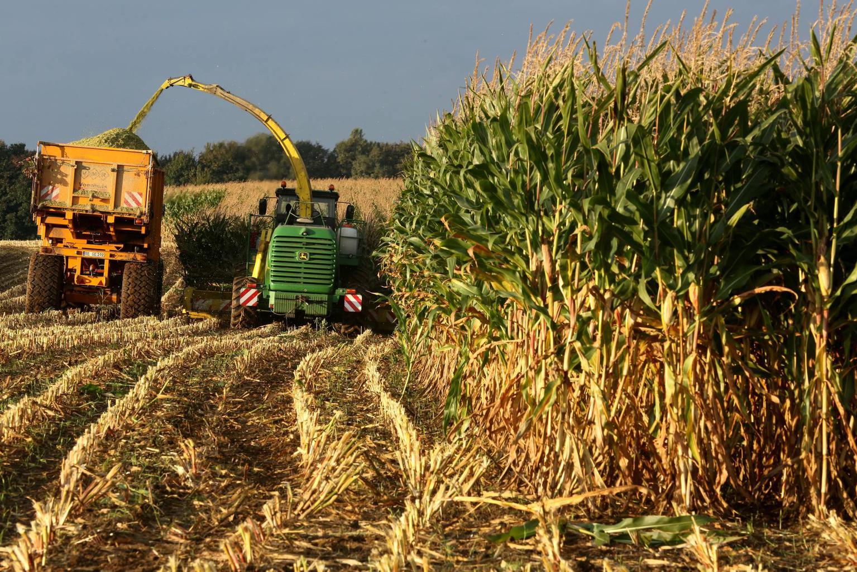 Производителям сельхозпродукции нельзя отказываться от ставки по налогу на прибыль, равной 0%